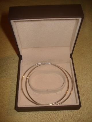 Nakit (prstenje,naušnice,ogrlice,lančići,narukvice) - Page 4 Dsc02811