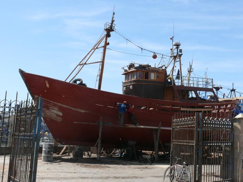 La pêche ,le poisson,les marins et l'activité au port P1010810