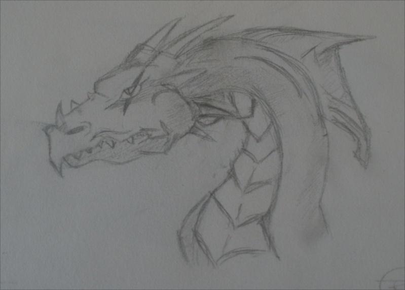 Elegna VS Xandrya [dragon/Crow] Dragon10