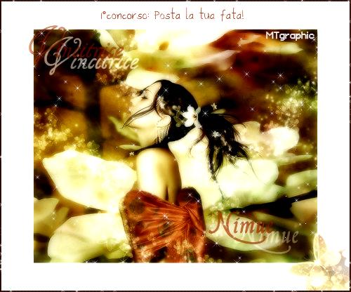 Scambio Banner Nimue10