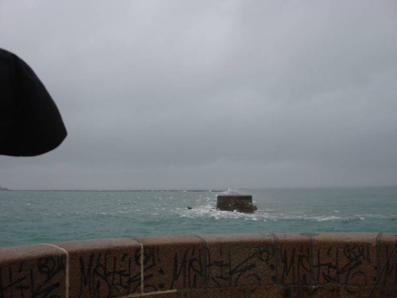 Samedi 13 novembre 2010 ...  sous le sous-marin de la Tour Royale à Toulon... - Page 4 Sdsc0016