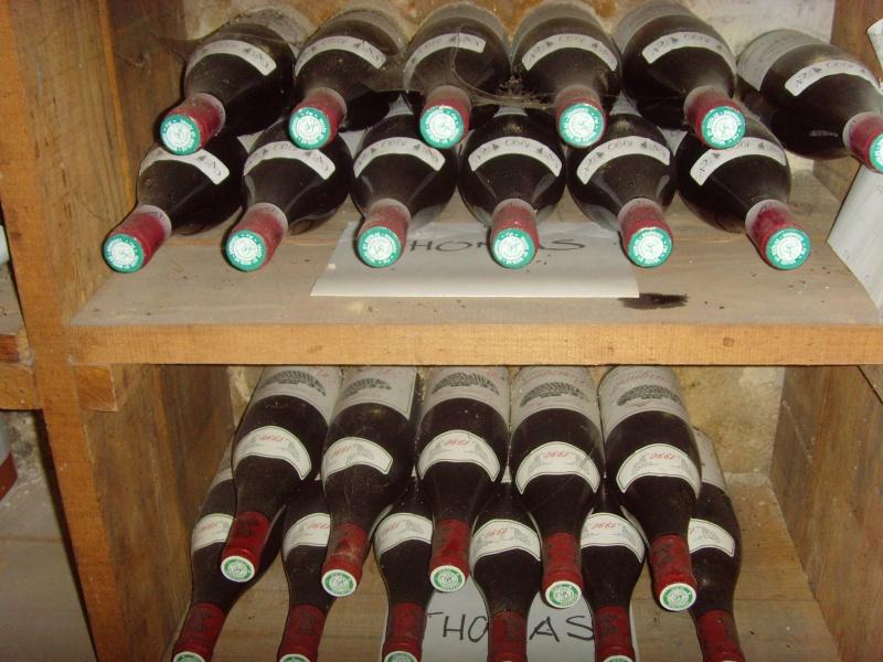 les alfistes et le vin Snv35313