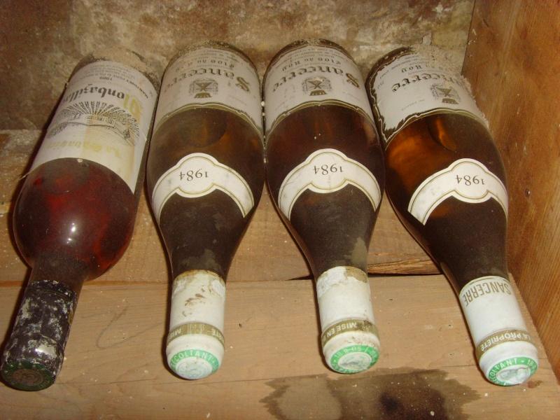les alfistes et le vin Snv35314