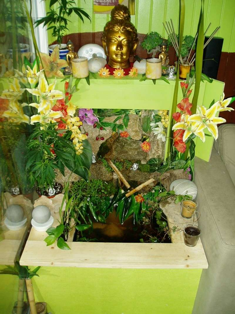 Fontaine vegetal P1010820
