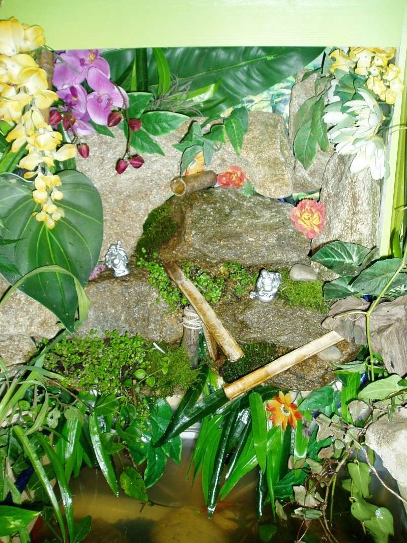 Fontaine vegetal P1010823