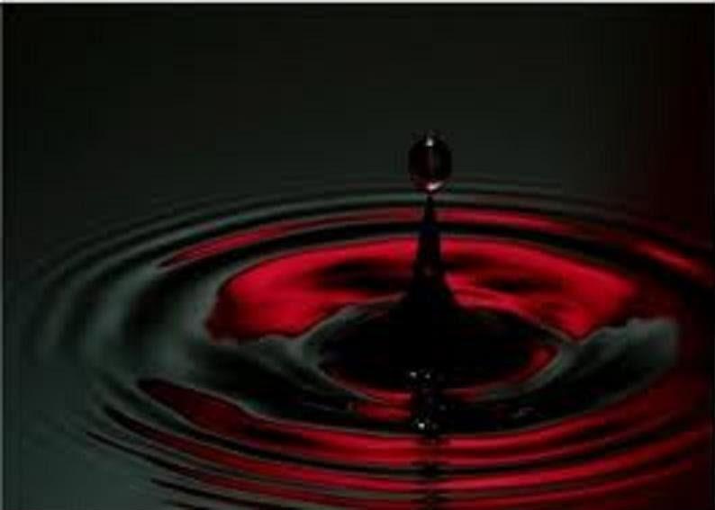 União De Sangue-Parte II - Página 4 Ogaaai11