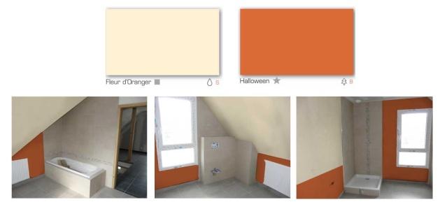 Conseils couleurs salle de bain Sdb_10