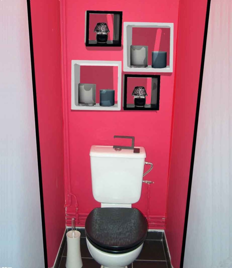décorer mon toilette - Page 12 Wc_anc23
