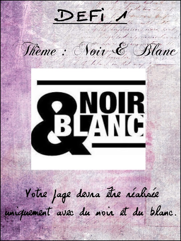 Défi 1 : Noir & Blanc Dzofi114