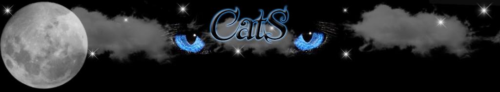 Gilde CatS