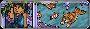 Giochi Regno di Corallo