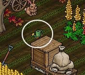 [IT] Quackrantena con Travy - Giardinaggio #5 - Pagina 2 Sche1416