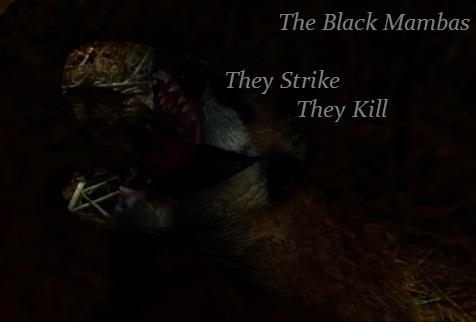 Black Mambas Blackm10