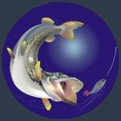 Форум о рыбалке