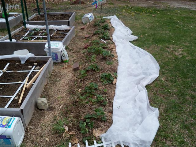 My so-called Urban Garden-picture over load 04-19-14