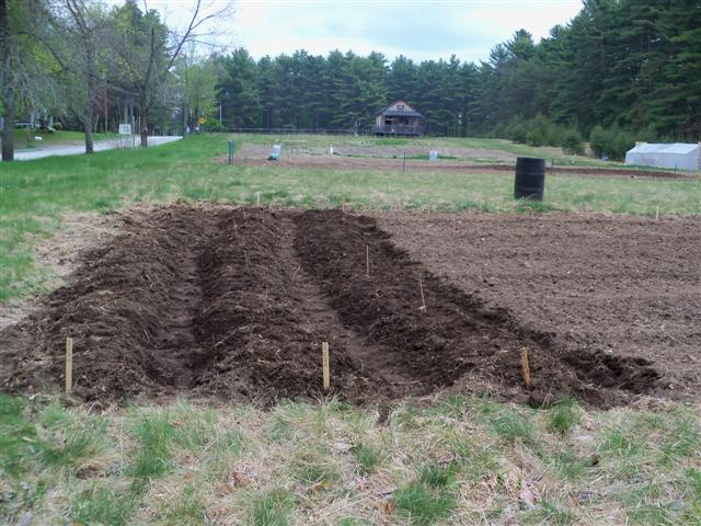 Need help with large community garden plot. 05-02-10