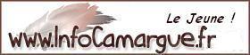 Info-Camargue, Le Jeune