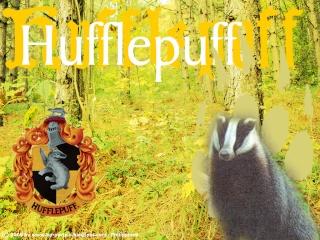 Sala común de Hufflepuff