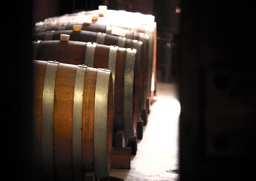 Uve, profumi ed altri sentori Wine11