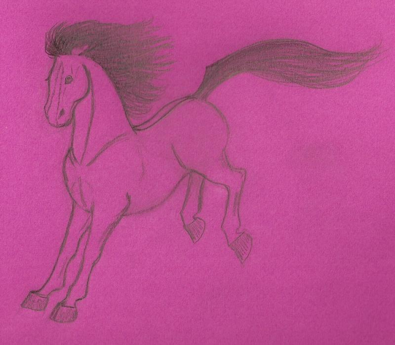Encore un cheval....  Numari34