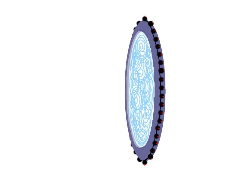 Cheval spatial Commande pour Nadri Portai11