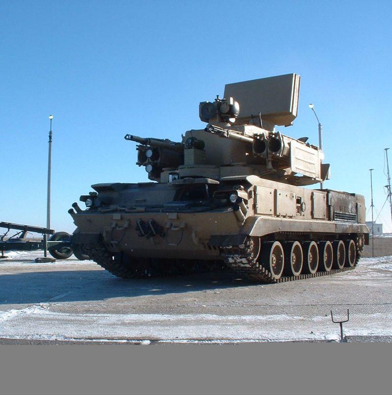 Tunguska gun/missile system replacement Dscf0010
