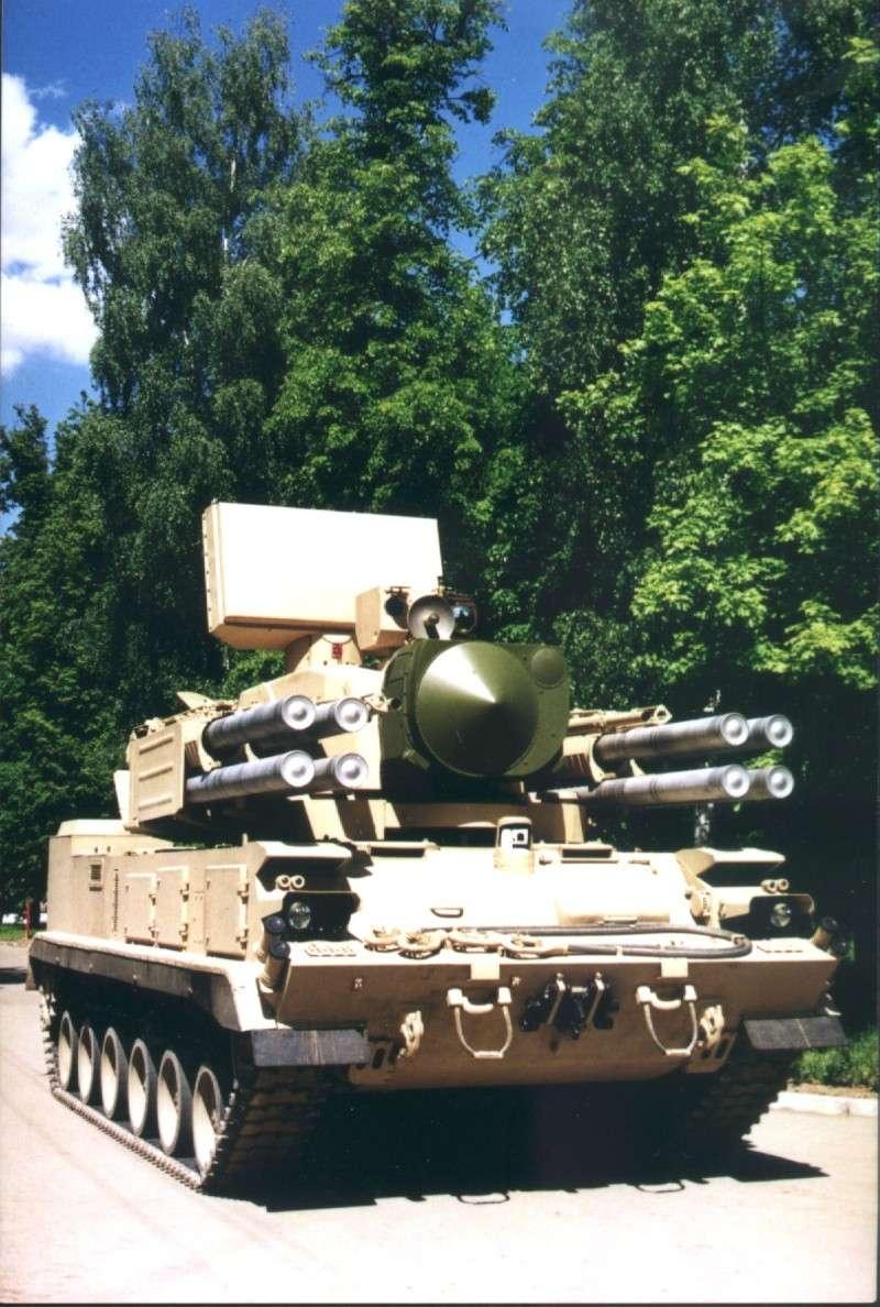 Tunguska gun/missile system replacement P29110