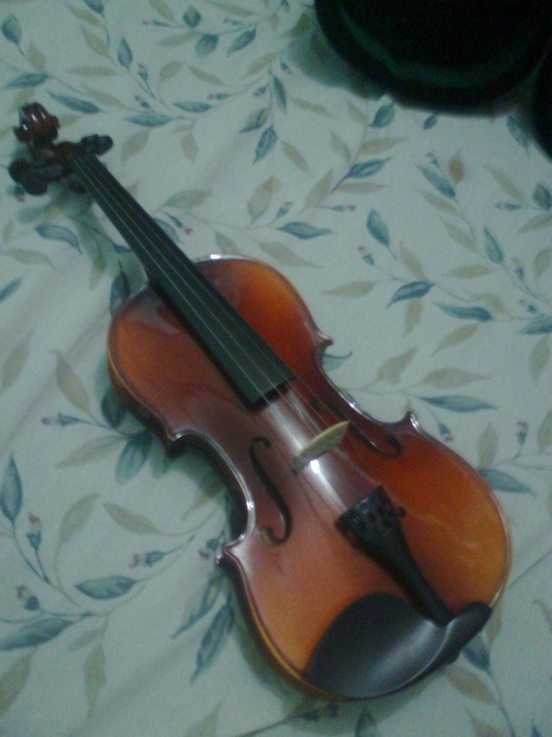 Im a newbie..What do u think of this violin? Pichur12