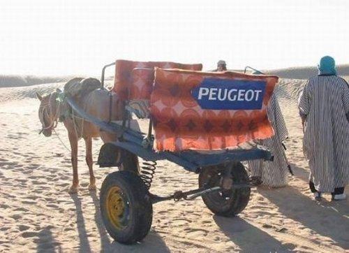 Humour post-pétrolifère Salon_10