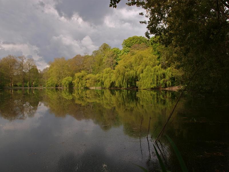 Vos plus belles photos du mois de mai 2010 Lac13