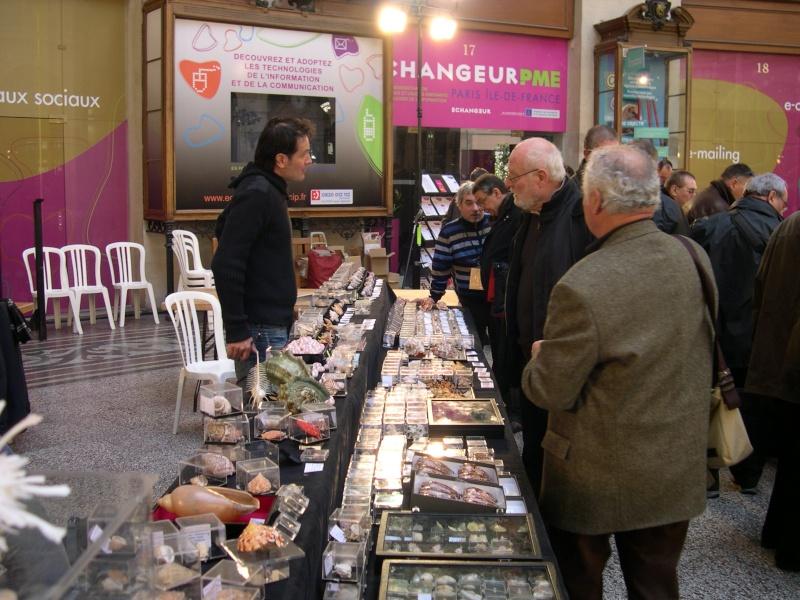 2011 Bourse internationale de Paris - 5 & 6 mars - Page 4 Dscn1312