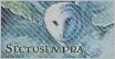 Sectumsempra (Foro nuevo!) Afilia14