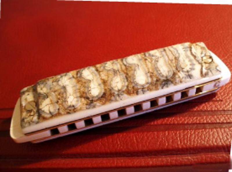 Photos harmonicas Brodur - Page 2 Captur13