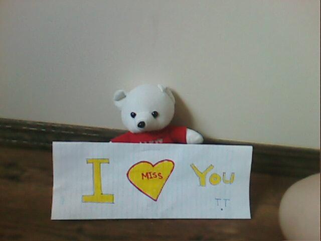 my special teddy bear.. lool - Page 2 Img05311