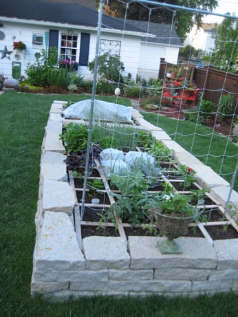 Stone Square Foot Garden Looking good 00110