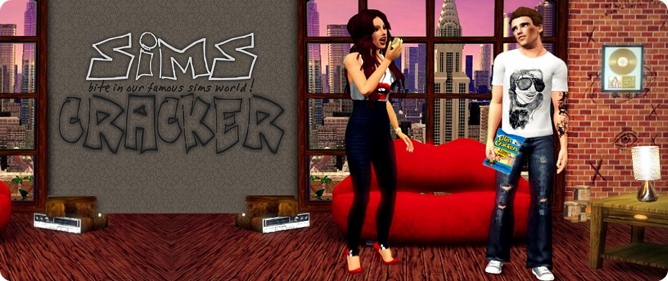 The Sims Cracker