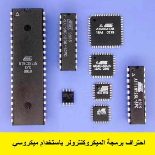 كتاب احتراف برمجة الميكروكنترولر باستخدام ميكروسي B_p_i_10