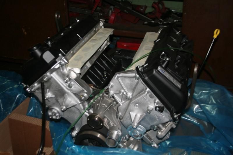 Shelby Rebuild Brand_12