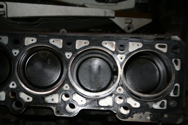 Shelby Rebuild Cycl_710