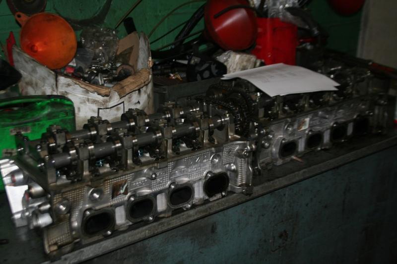 Shelby Rebuild Monste10