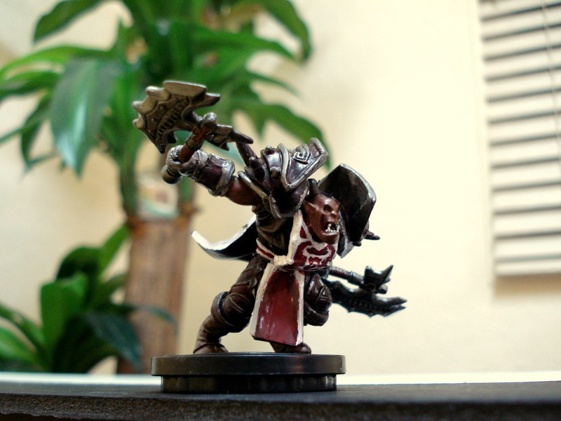 customize minis 3 - For the Horde! Dsc01813