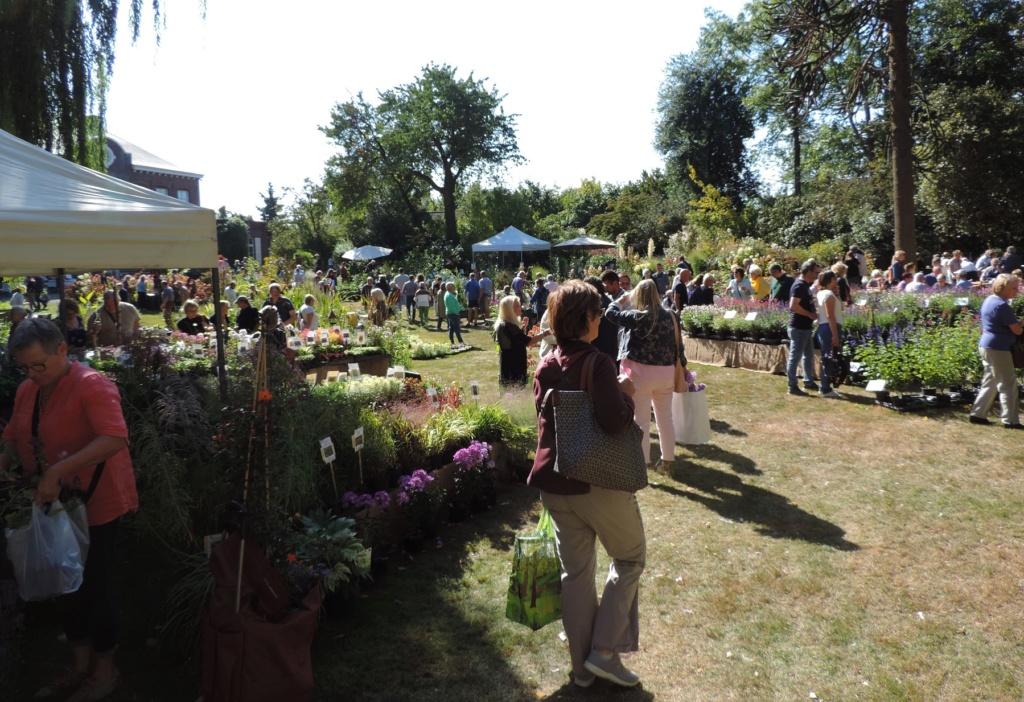 Foire aux plantes  27 - 28 septembre 2014  LA FEUILLERIE 20191473