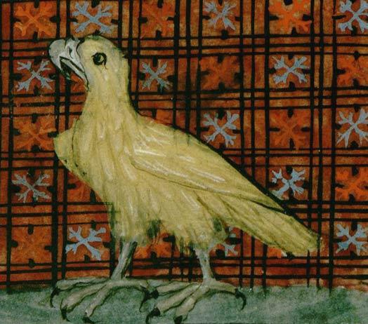 Les animaux du bestiaire Aigle10