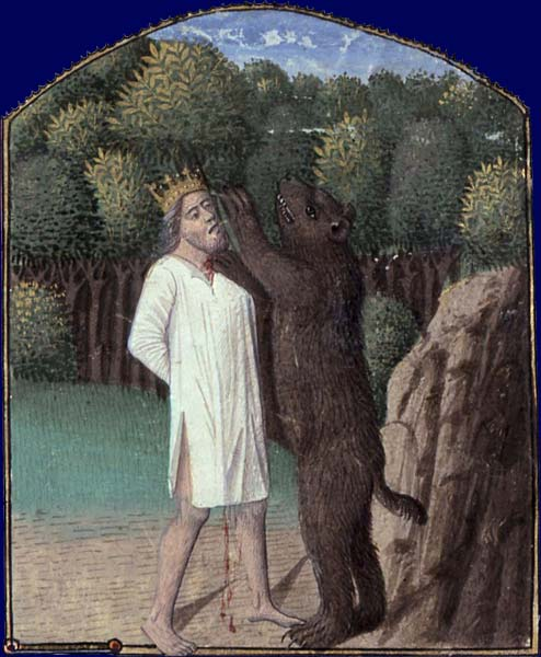 L'ours B_0110