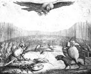 Fables d'Esope Du-rat10