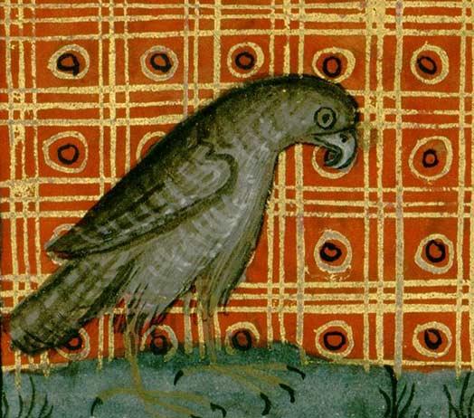 Les animaux du bestiaire Faucon10