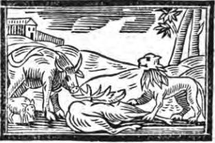 Fables d'Esope - Page 2 Le-lio11