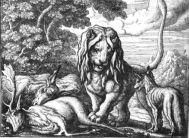 Fables d'Esope Lionpe10