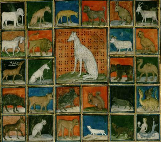 Les animaux du bestiaire Tout10