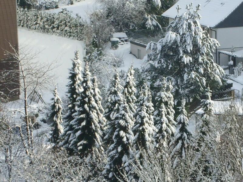 Wünsche Euch einen schönen 1. Advent morgen  - Seite 3 Winter10